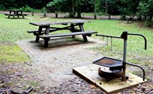 Bellbird campground - Victoria Tourism