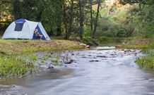 Nymboida Camping  Canoeing - Victoria Tourism