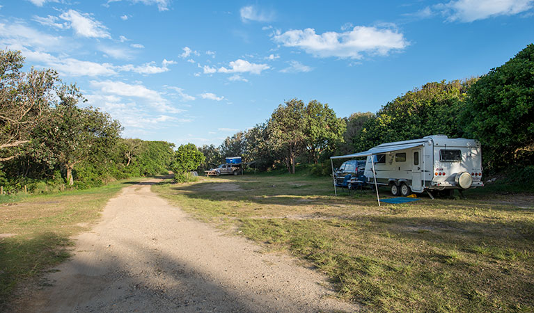 Racecourse Campground - Victoria Tourism