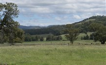 Ingleden Park Bed and Breakfast Farmstay Cottages - Victoria Tourism