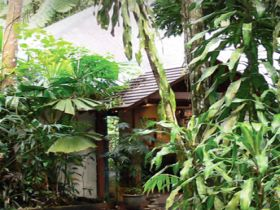 Heritage Lodge and Spa - In the Daintree - Victoria Tourism