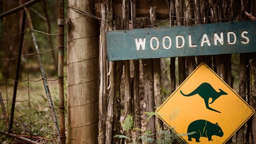 Woodlands Rainforest Retreat - Victoria Tourism