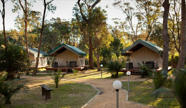 NRMA Myall Shores Holiday Park - Victoria Tourism