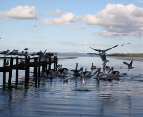 Pelicans At Denmark - Holiday Home - Victoria Tourism