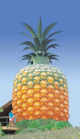 The Big Pineapple - Victoria Tourism