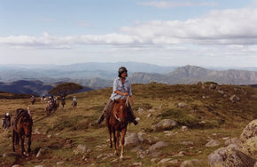 High Country Horses - Victoria Tourism