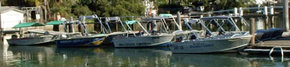 Brooklyn Central Boat Hire & General Store - Victoria Tourism
