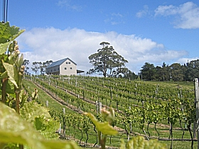 Bruny Island Premium Wines Bar and Grill - Victoria Tourism