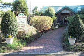 Two Oaks Nursery Gallery and Cafe - Victoria Tourism