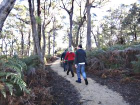 Bridport Walking Track - Victoria Tourism