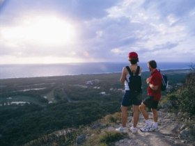 Mount Coolum National Park - Victoria Tourism