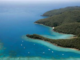 Butterfly Bay - Hook Island - Victoria Tourism