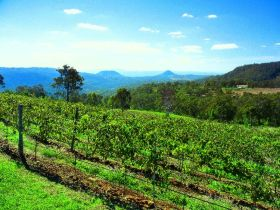 Preston Peak Wines - Victoria Tourism