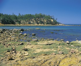Aslings Beach - Victoria Tourism