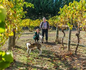 Little River Wines of Taggerty - Victoria Tourism
