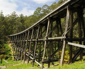 Noojee Trestle Bridge - Victoria Tourism