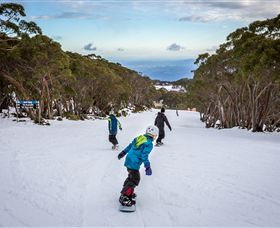 Mt Baw Baw Alpine Resort - Victoria Tourism