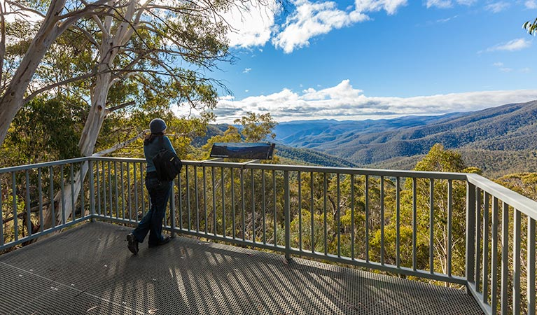 Wallace Creek lookout - Victoria Tourism