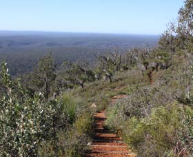 Mount Dale Walk Trail - Victoria Tourism