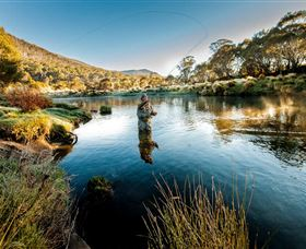 Fly Fishing Tumut - Victoria Tourism