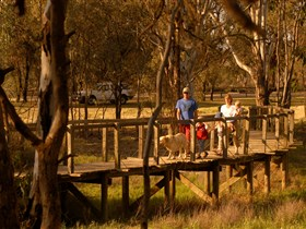 Loxton's Drives Walks and Trails - Victoria Tourism