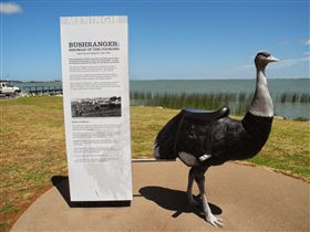 Birdman of the Coorong - Victoria Tourism