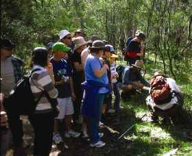 Warrumbungle National Park Discovery Program - Victoria Tourism