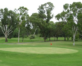 Moree Golf Club - Victoria Tourism