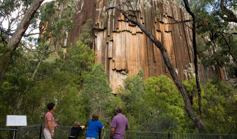 Sawn Rocks walking track - Victoria Tourism