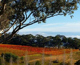 Bloodwood Estate - Victoria Tourism