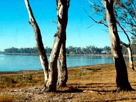 Lake Broadwater Conservation Park - Victoria Tourism