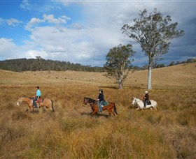 Chapman Valley Horse Riding - Victoria Tourism