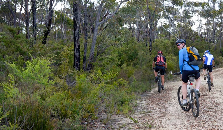 McMahon's Point ride - Wentworth Falls - Victoria Tourism