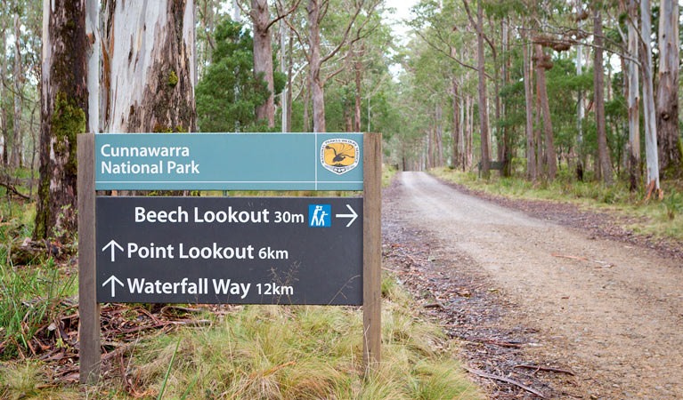 Beech lookout - Victoria Tourism