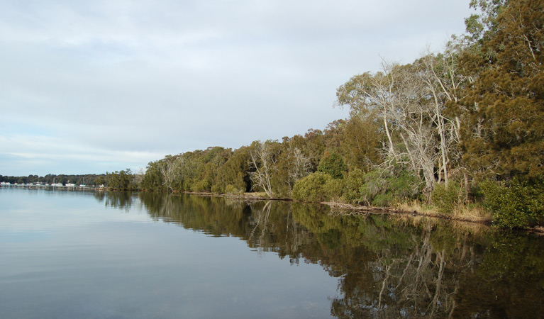 Lake Macquarie State Conservation Area - Victoria Tourism