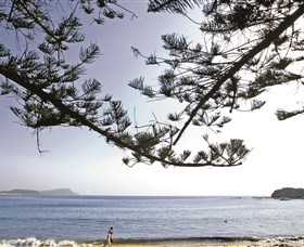 Terrigal Beach - Victoria Tourism