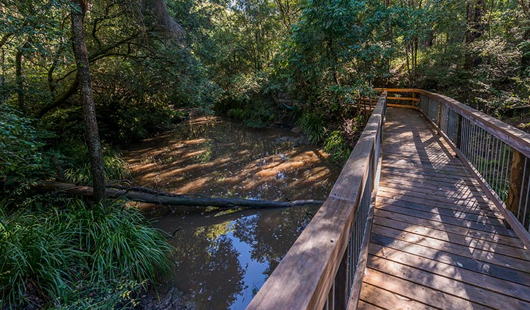 Ms Kellys walking track - Victoria Tourism