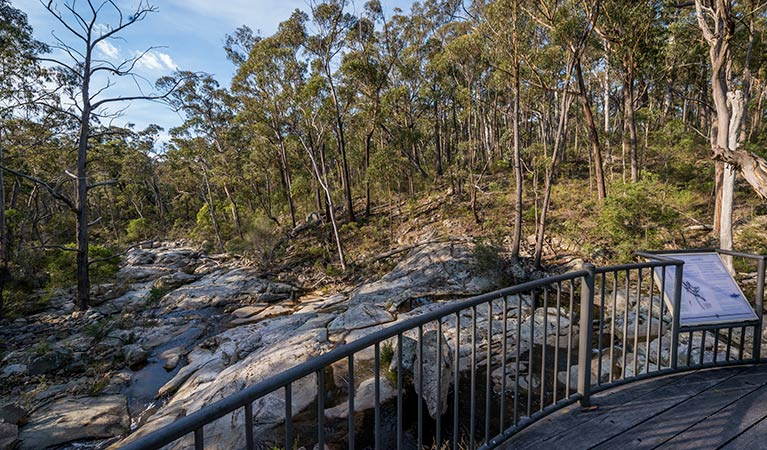 Myanba Gorge walking track - Victoria Tourism