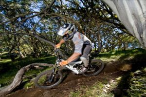 All Terrain Cycles - Victoria Tourism