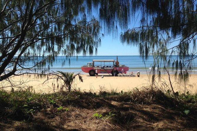 1770 Coastline Tour by LARC Amphibious Vehicle Including Picnic Lunch - Victoria Tourism