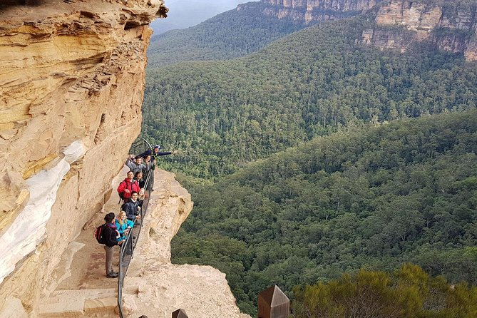 Hike into the Wild Blue Mountains