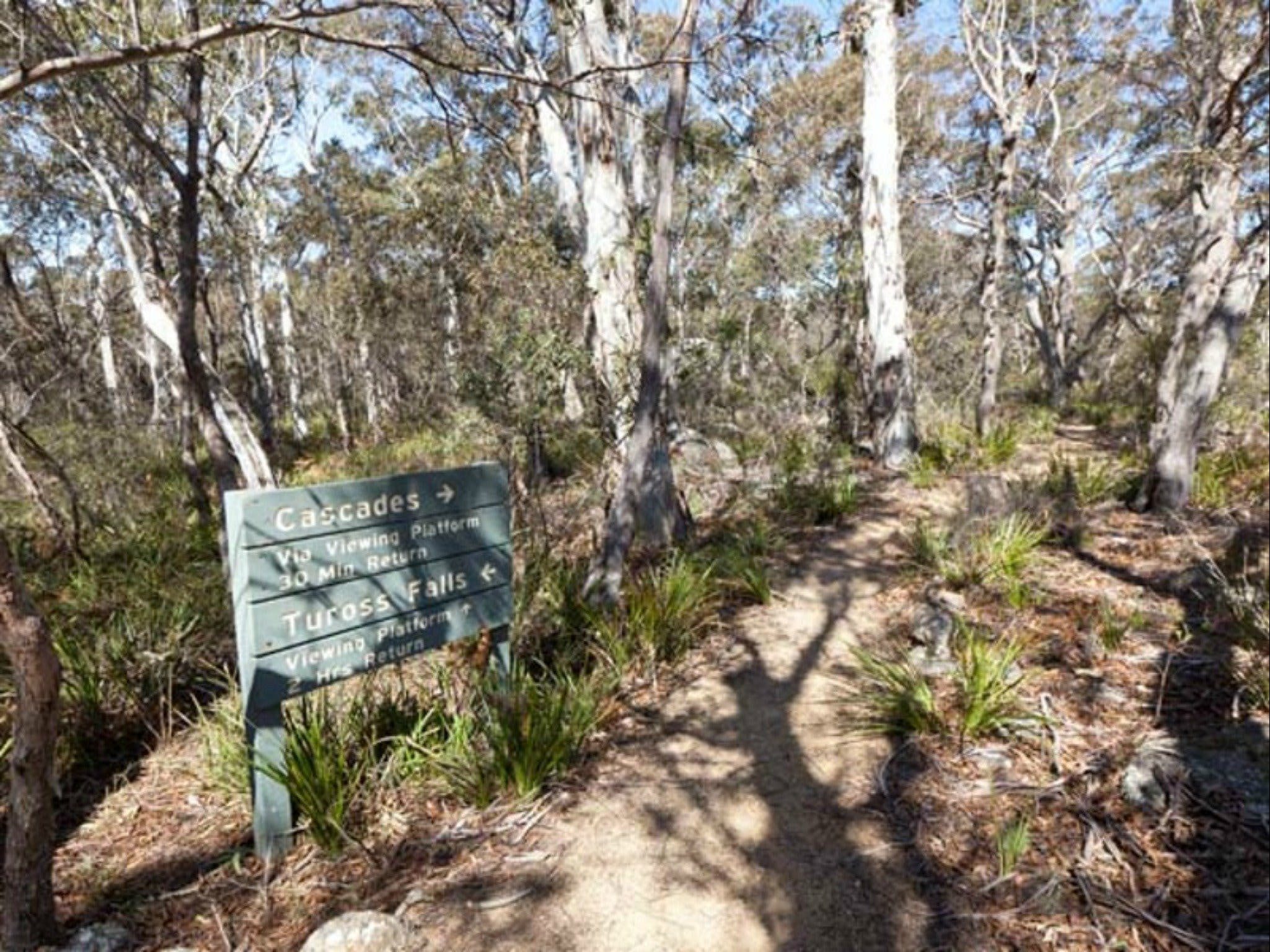 Cascades walking track and viewing platform - Victoria Tourism