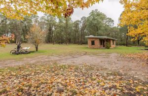Major Clews Hut Walking Track - Victoria Tourism