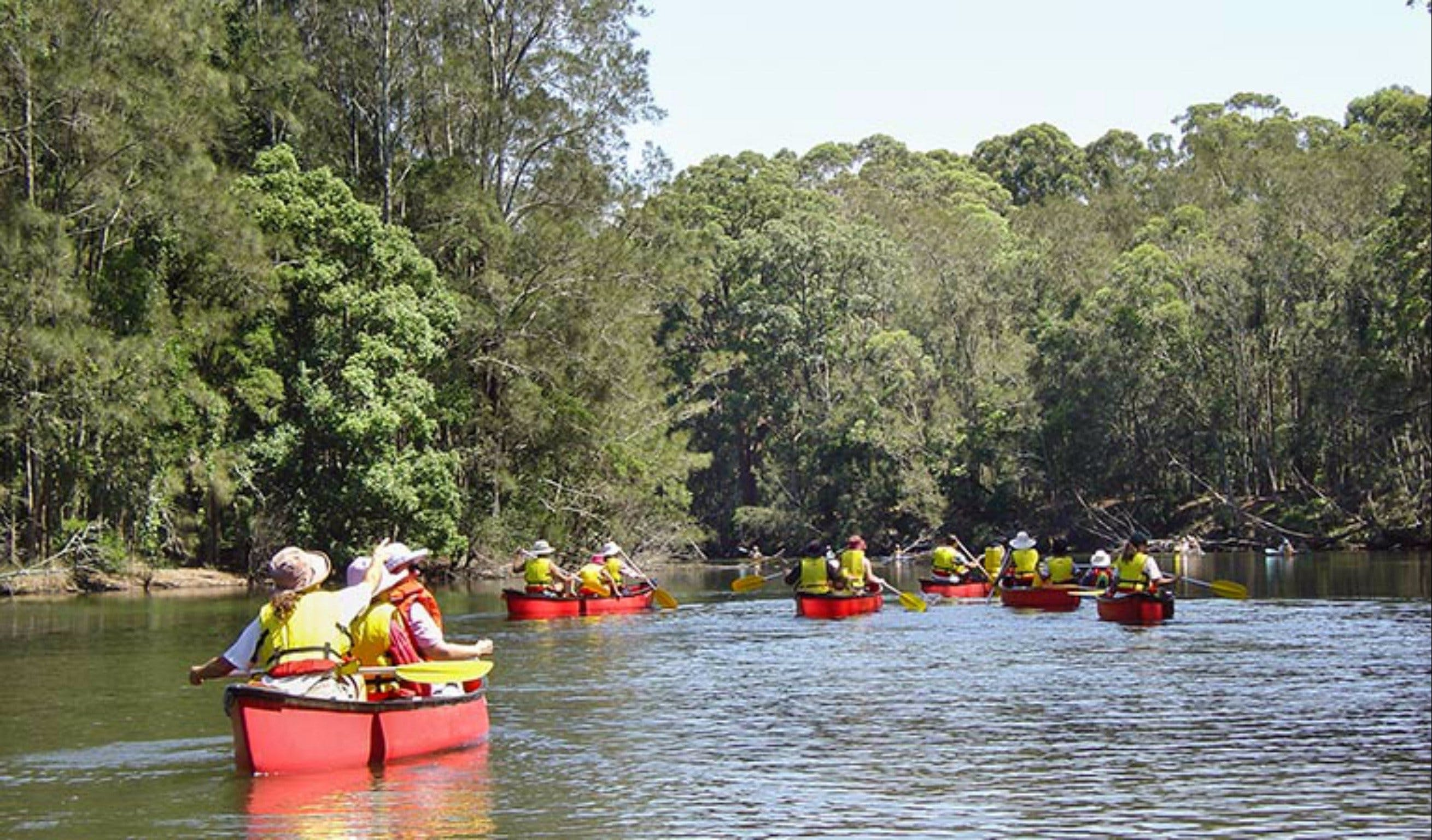 Bonville Creek - Victoria Tourism