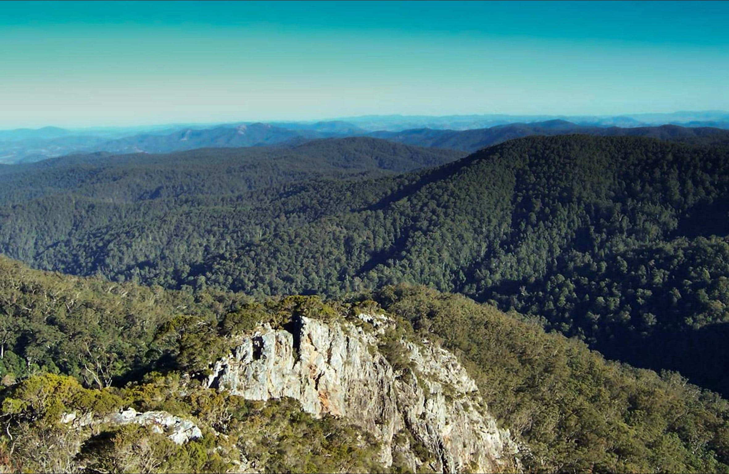 Rowleys Peak lookout - Victoria Tourism