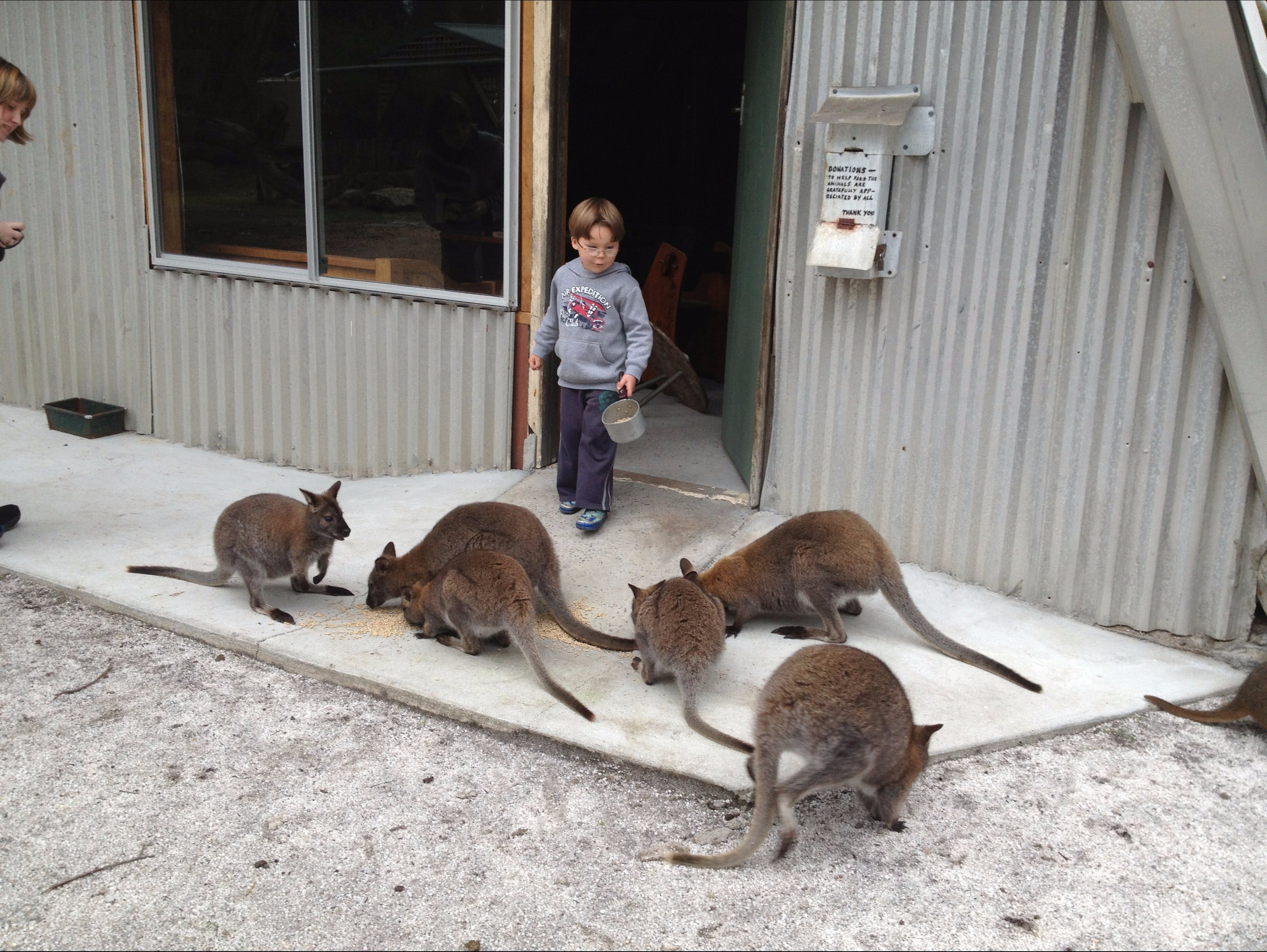The Patriarch Wildlife Sanctuary - Victoria Tourism
