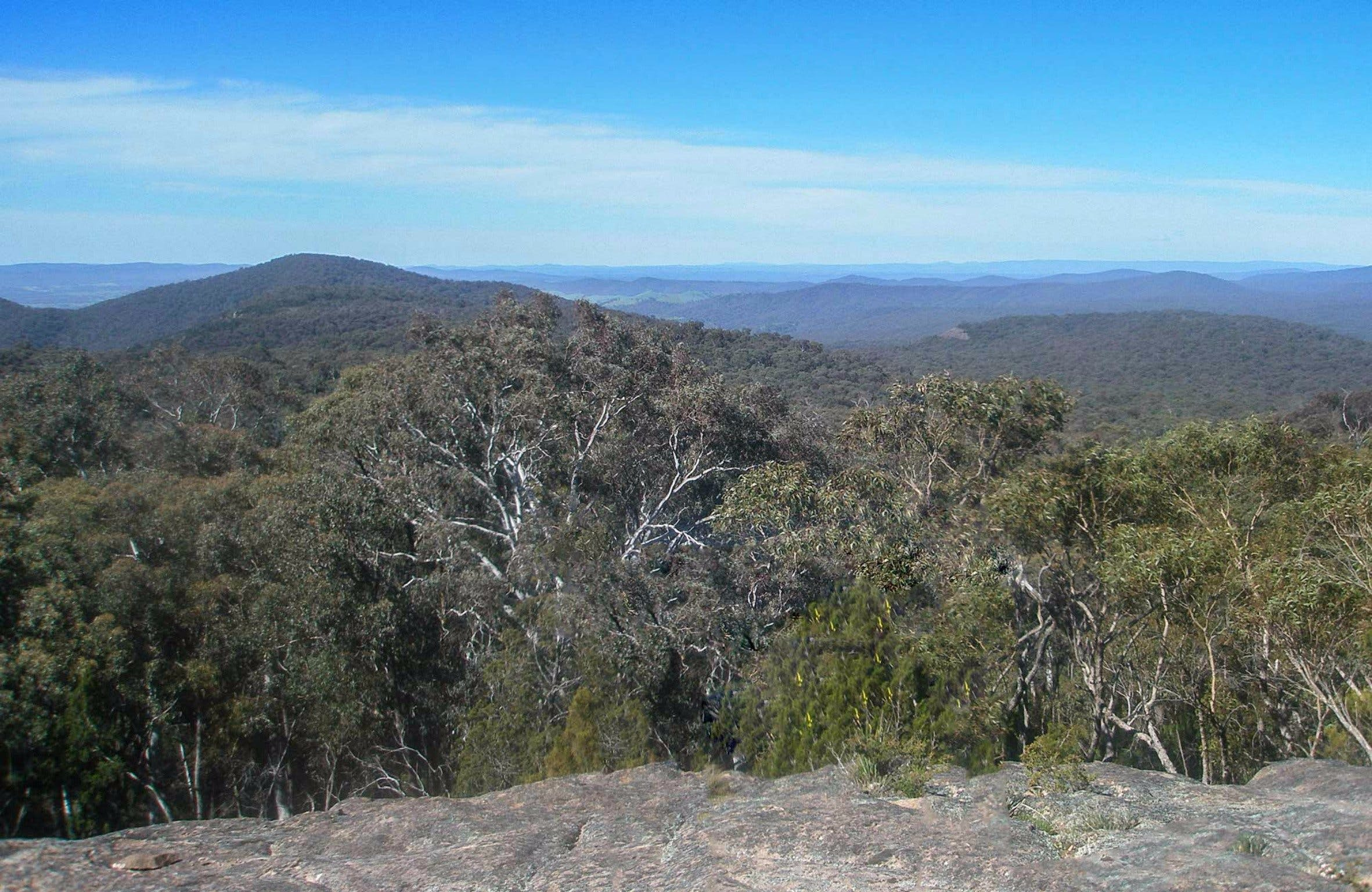 Woomargama National Park - Victoria Tourism