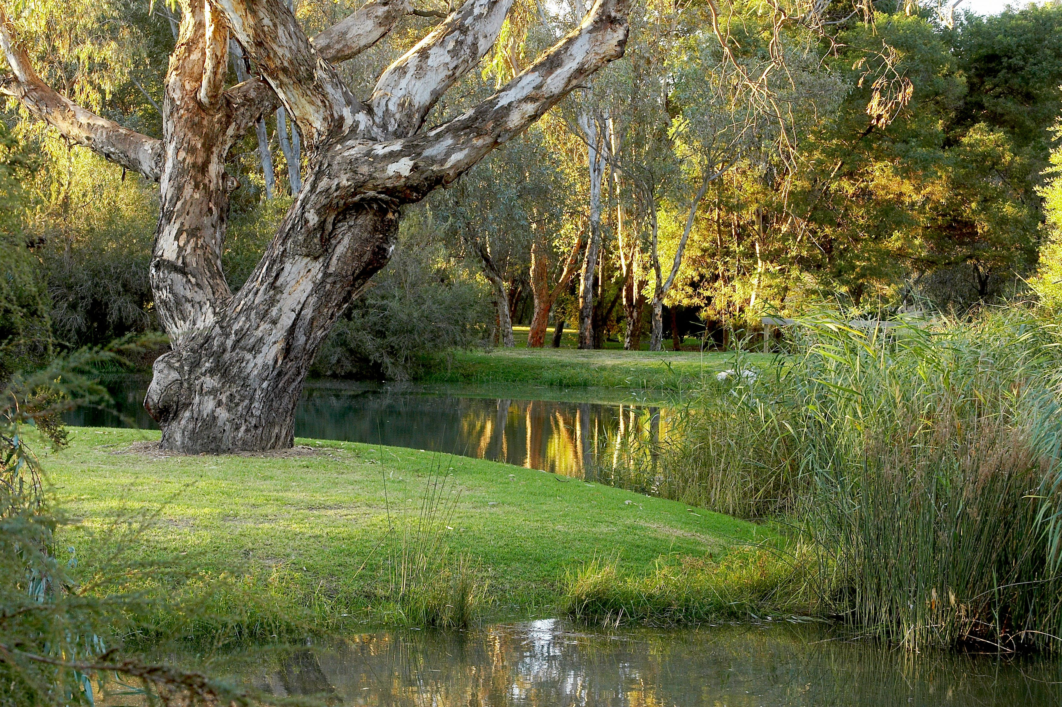 Gateway Island Parklands - Victoria Tourism