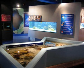 Marine and Freshwater Discovery Centre - Victoria Tourism