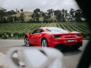 The Prancing Horse Supercar Drive Day Experience - Melbourne Yarra Valley - Victoria Tourism
